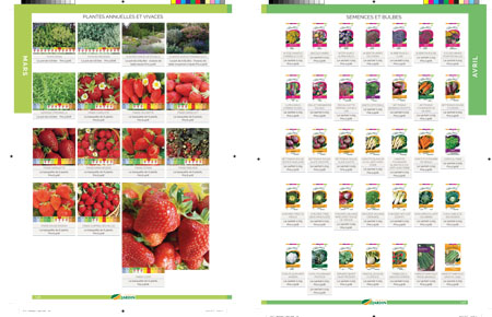 catalogue de graines jardinage